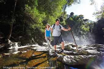 bushwalking on the gold coast
