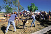 Wood Chopping